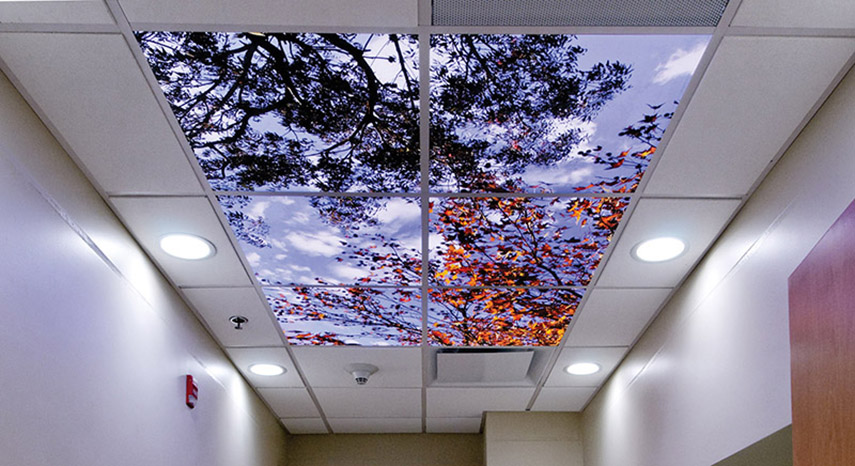 Scenic overheads sereneview sereneview overheads overheads ceiling tiles lighting luminaires mozeypictures Images